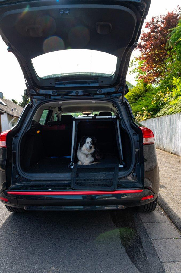 Hundetransportbox von Knuuf in Action!